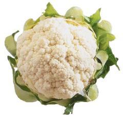 12058_cauliflower_1_full