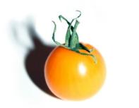 298x232_NR_fighting_tomato
